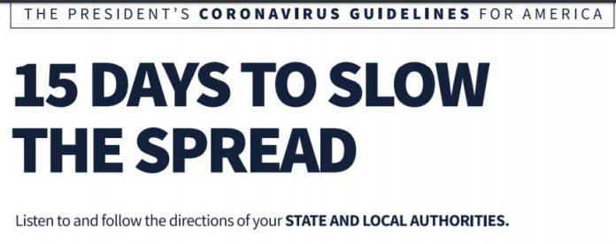 president coronavirus guide